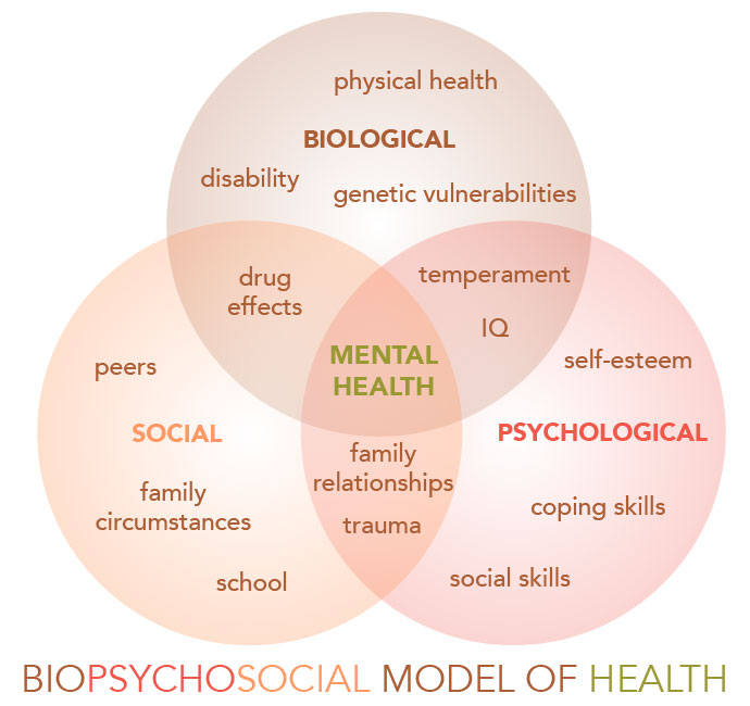 Biopsychosocial model of health venn diagram
